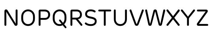 Rubrik New Regular Font UPPERCASE