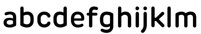 Rubrik New SemiBold Font LOWERCASE