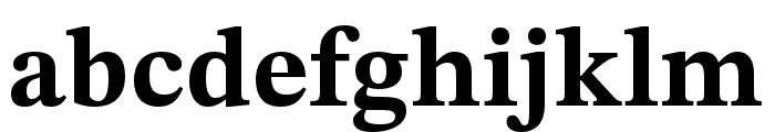 STIX Two Text Bold Font LOWERCASE