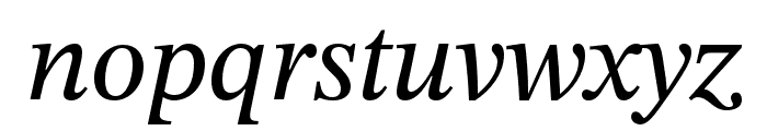 STIX Two Text Italic Font LOWERCASE