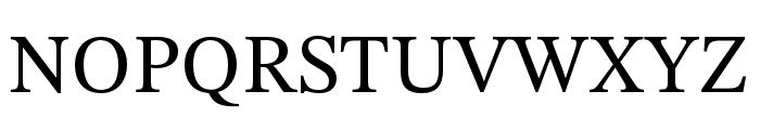 STIX Two Text Regular Font UPPERCASE