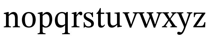 STIX Two Text Regular Font LOWERCASE