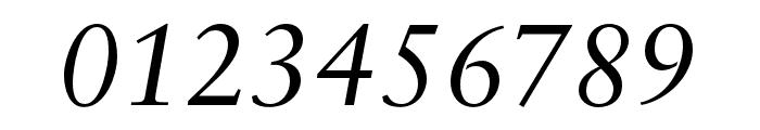 Sabon LT Pro Italic Font OTHER CHARS