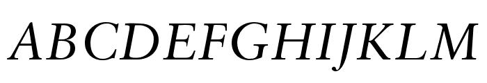 Sabon LT Pro Italic Font UPPERCASE