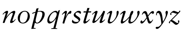 Sabon LT Pro Italic Font LOWERCASE
