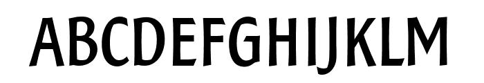 SamSans Bold Font UPPERCASE