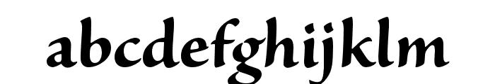 Sanvito Pro Bold Display Font LOWERCASE