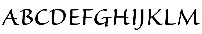 Sanvito Pro Display Font UPPERCASE