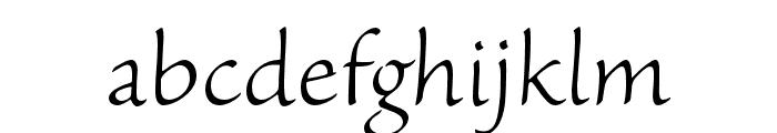 Sanvito Pro Light Caption Font LOWERCASE