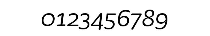 Sauna Mono Pro Regular Italic Font OTHER CHARS