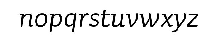 Sauna Mono Pro Regular Italic Font LOWERCASE