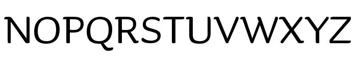 Sauna Mono Pro Regular Font UPPERCASE