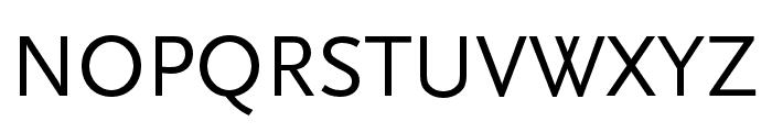 Scala Sans Pro Condensed Font UPPERCASE