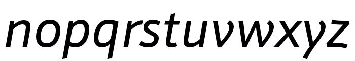 Schnebel Sans ME Italic Font LOWERCASE