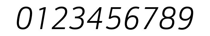 Schnebel Sans Pro Comp Light Italic Font OTHER CHARS