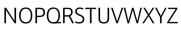 Schnebel Sans Pro Expand Light Font UPPERCASE