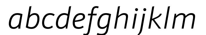 Schnebel Sans Pro Light Italic Font LOWERCASE