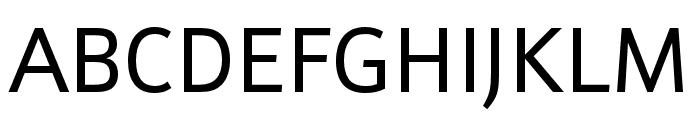 Schnebel Sans Pro Regular Font UPPERCASE