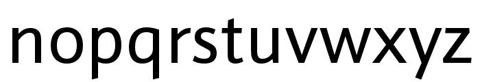 Schnebel Sans Pro Regular Font LOWERCASE