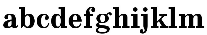 SchoolBook Cond Bold Regular Font LOWERCASE