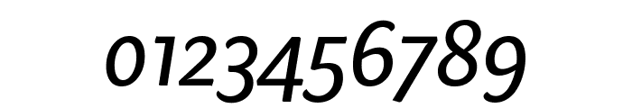 Sharik Sans Regular Italic Font OTHER CHARS