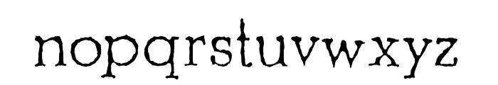 Shrub Regular Font LOWERCASE