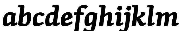 Skolar Latin Bold Italic Font LOWERCASE