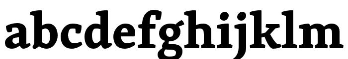 Skolar Latin Bold Font LOWERCASE