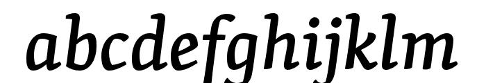 Skolar PE Medium Italic Font LOWERCASE