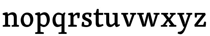 Skolar PE Medium Font LOWERCASE
