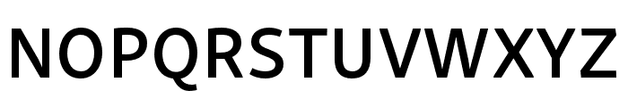 Skolar Sans Latin Condensed Semibold Italic Font UPPERCASE