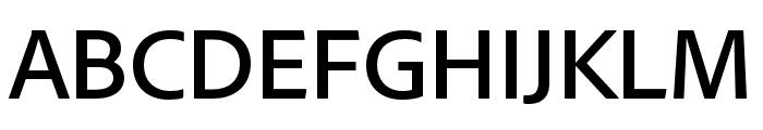 Skolar Sans Latin Condensed Thin Italic Font UPPERCASE