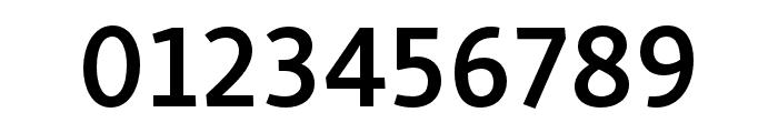 Skolar Sans PE Compressed Semibold Italic Font OTHER CHARS