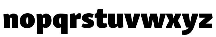 Skolar Sans PE Extended Black Font LOWERCASE