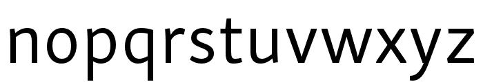 Skolar Sans PE Regular Font LOWERCASE