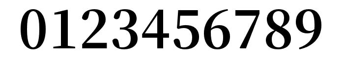 Source Han Serif K Bold Font OTHER CHARS