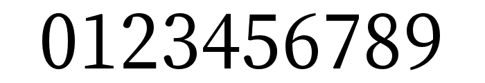 Source Han Serif K Medium Font OTHER CHARS