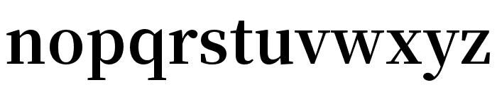 Source Han Serif SC Bold Font LOWERCASE