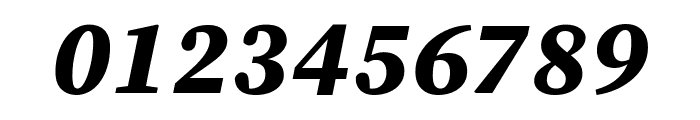 Source Serif Pro Black Italic Font OTHER CHARS