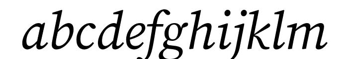 Source Serif Pro Italic Font LOWERCASE