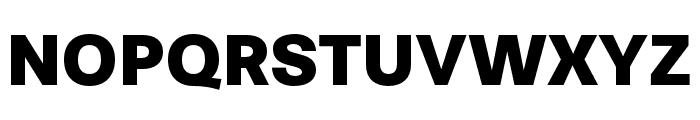 Stevie Sans Black Font UPPERCASE