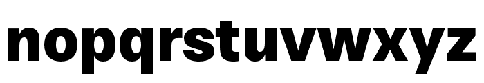 Stevie Sans Black Font LOWERCASE