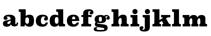 Superclarendon Black Font LOWERCASE