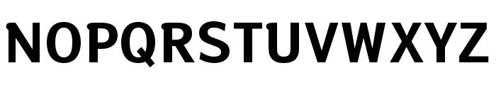 Susan Sans Bold Font UPPERCASE