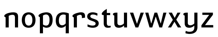 Susan Sans Book Font LOWERCASE