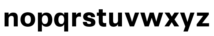 Synthese Bold Font LOWERCASE