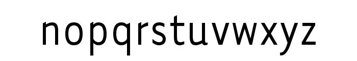 Tarzana Nar OT Regular Font LOWERCASE