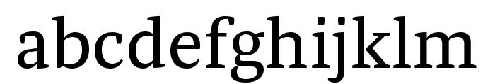 Tasman Regular Font LOWERCASE
