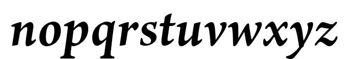 Ten Oldstyle Bold Italic Font LOWERCASE