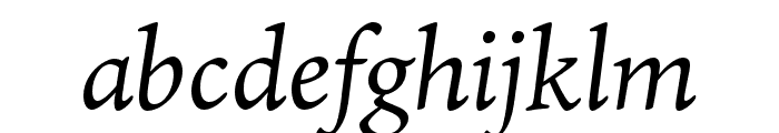 Ten Oldstyle Italic Font LOWERCASE
